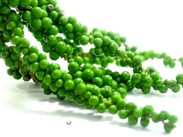 zielony pieprz